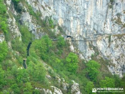Picos de Europa-Naranjo Bulnes(Urriellu);Puente San Isidro; el caminito del rey la pinilla